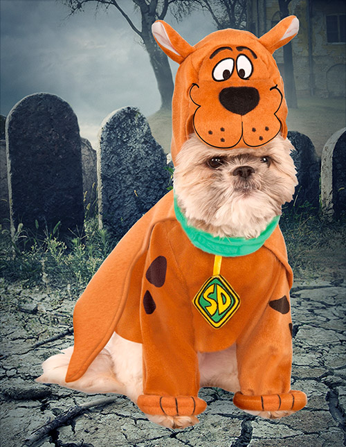 Scooby-Doo Dog Costume