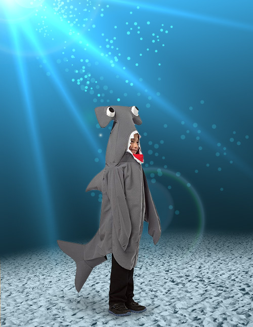 Kid Shark Costume