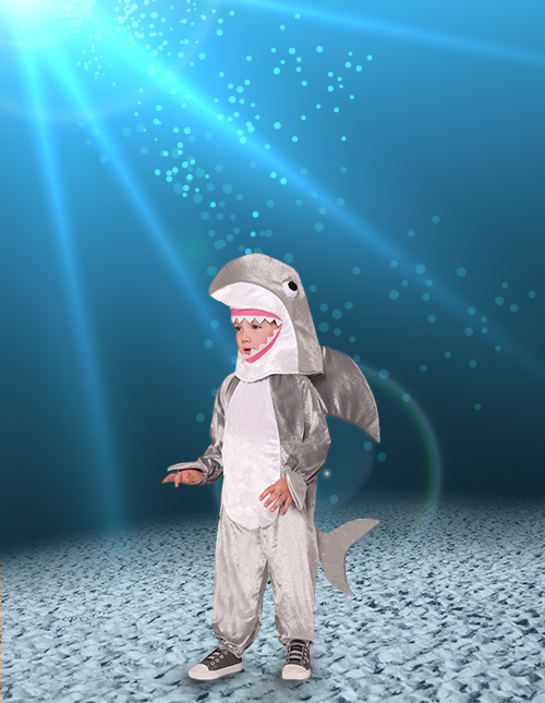 Shark Boy Costume