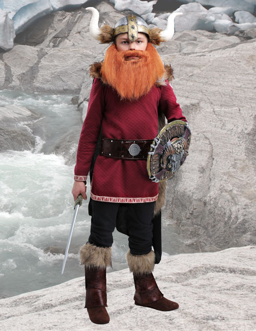 Viking Boy