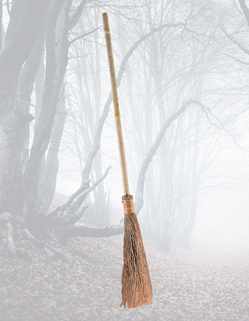 Wicked Witch Broom