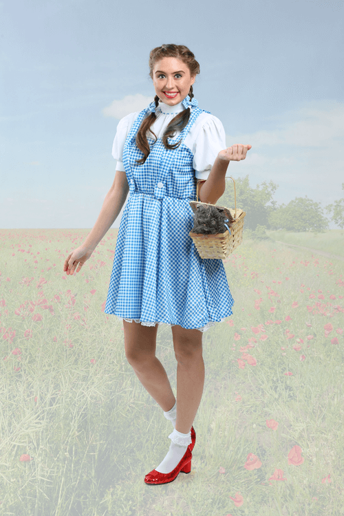 wonderful wizard of oz costumes halloweencostumescom