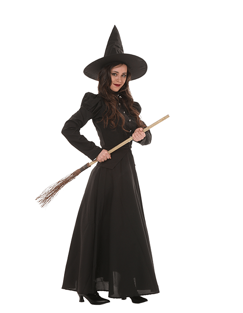Women's Deluxe Witch Costume