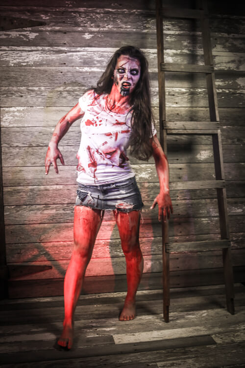 Zombie Costumes Amp Walking Dead Costumes