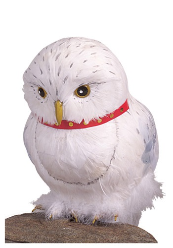 Hedwig Accessory By: Rubies Costume Co. Inc for the 2015 Costume season.