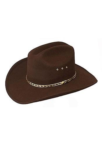 Brown Cowboy Hat Update