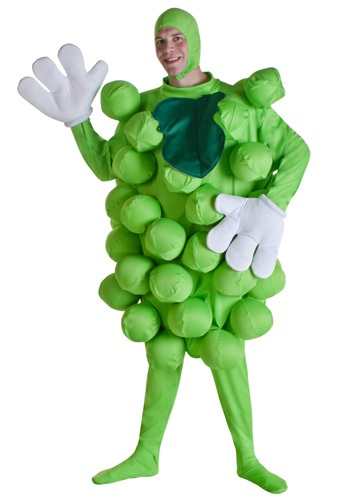 INOpets.com Anything for Pets Parents & Their Pets Green Grapes Costume