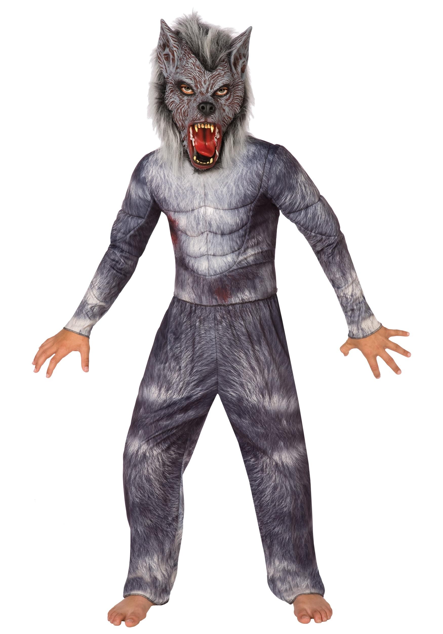 Aninimal Book: Boys Werewolf Costume