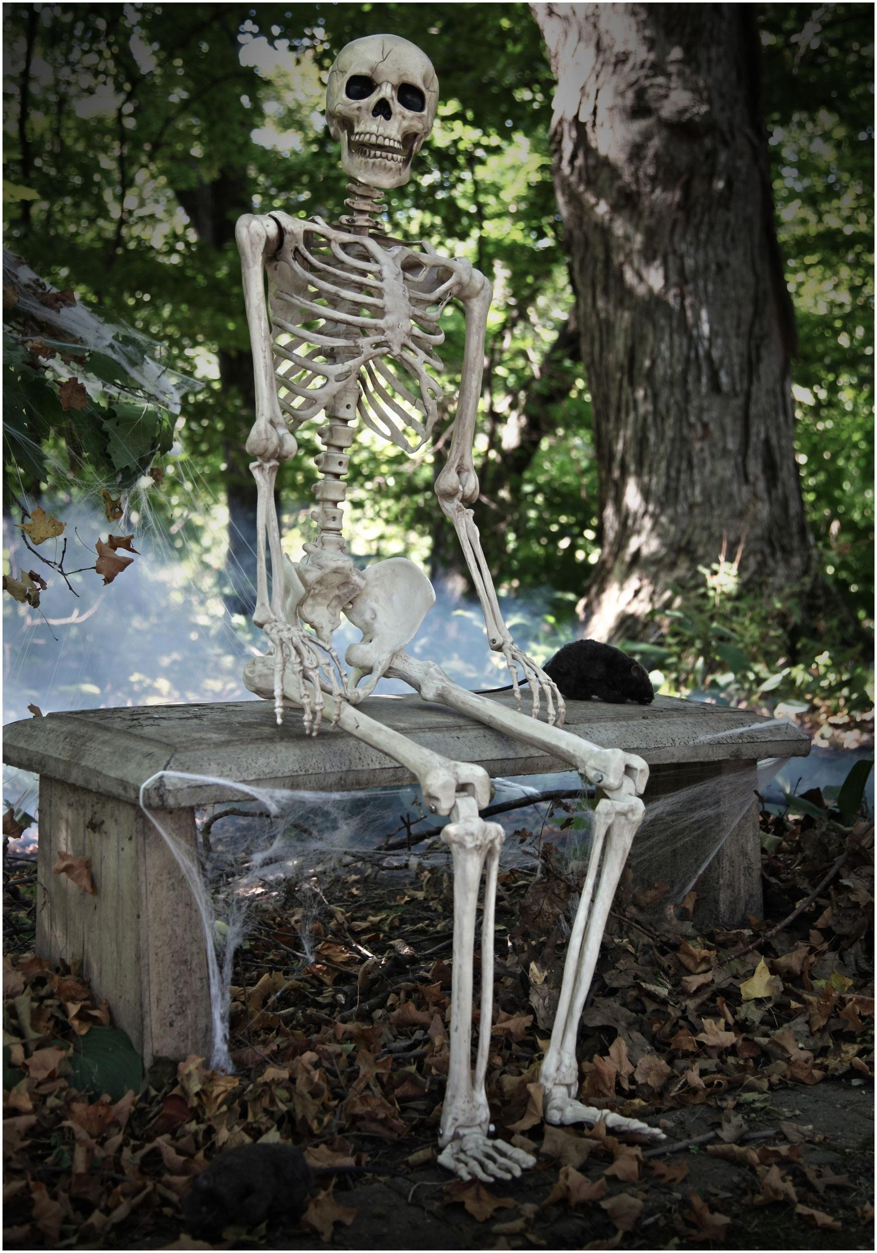 Lifesize Posable Skeleton Skeleton Halloween Decorations