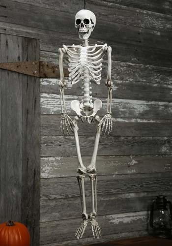 Plastic Realistic Skeleton Update 1
