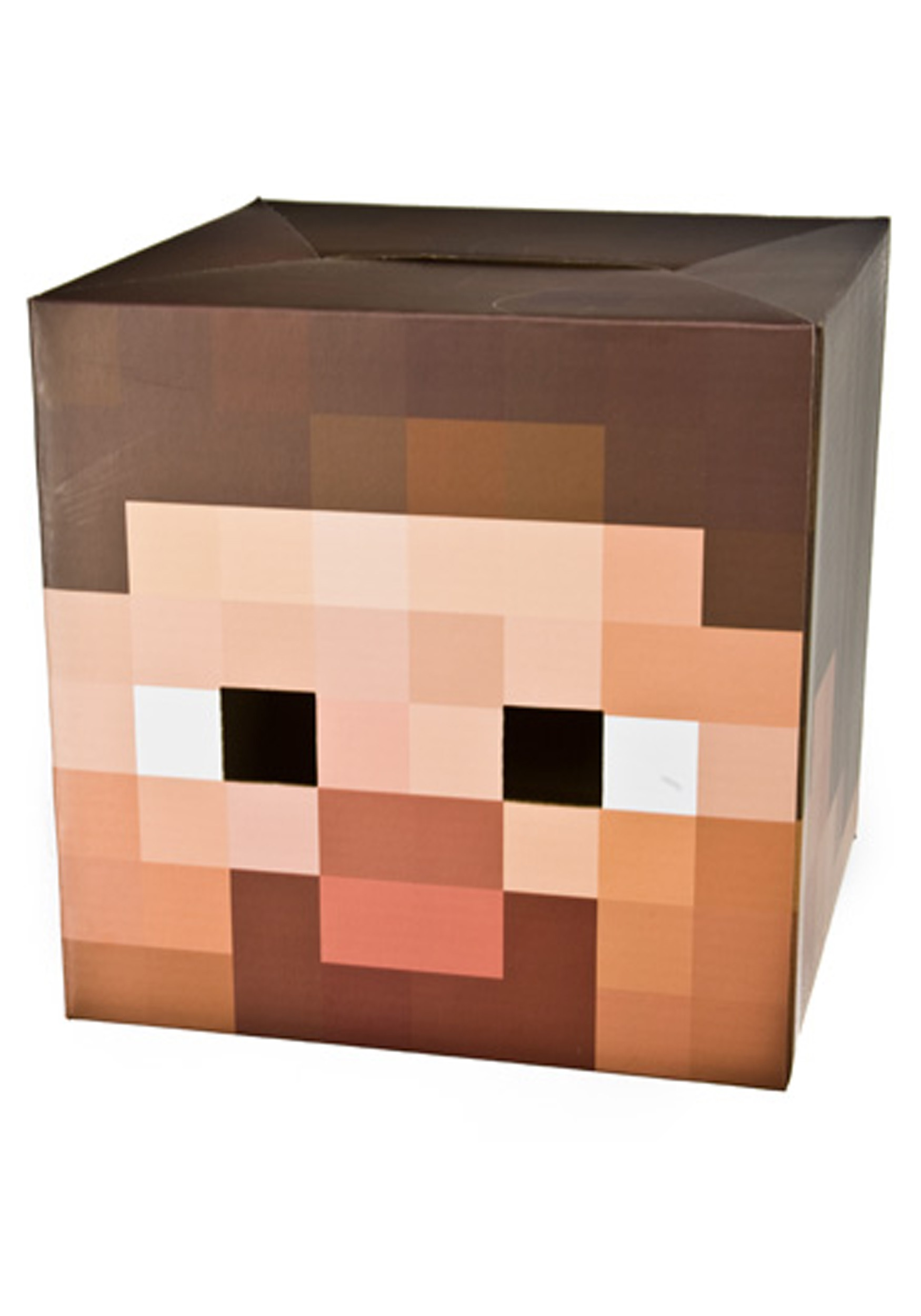 Minecraft Steve Head JI2709