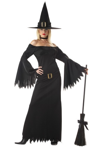 Sexy Witch Costume for Adults