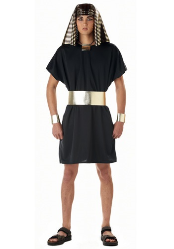 Adult Egyptian Pharaoh Costume By: California Costume Collection for the 2015 Costume season.
