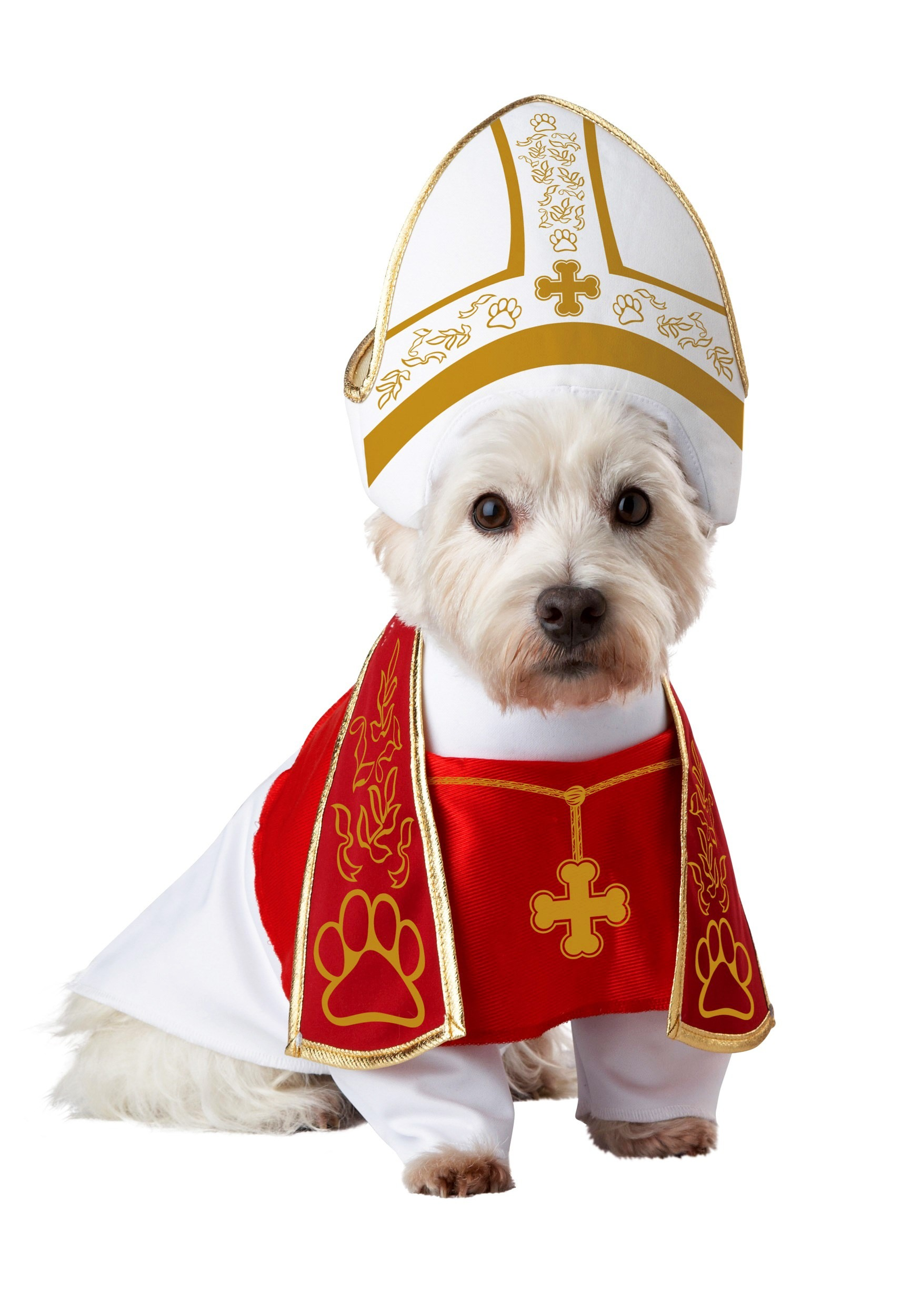 holy hound pet costume - Halloween Costume For Small Dogs