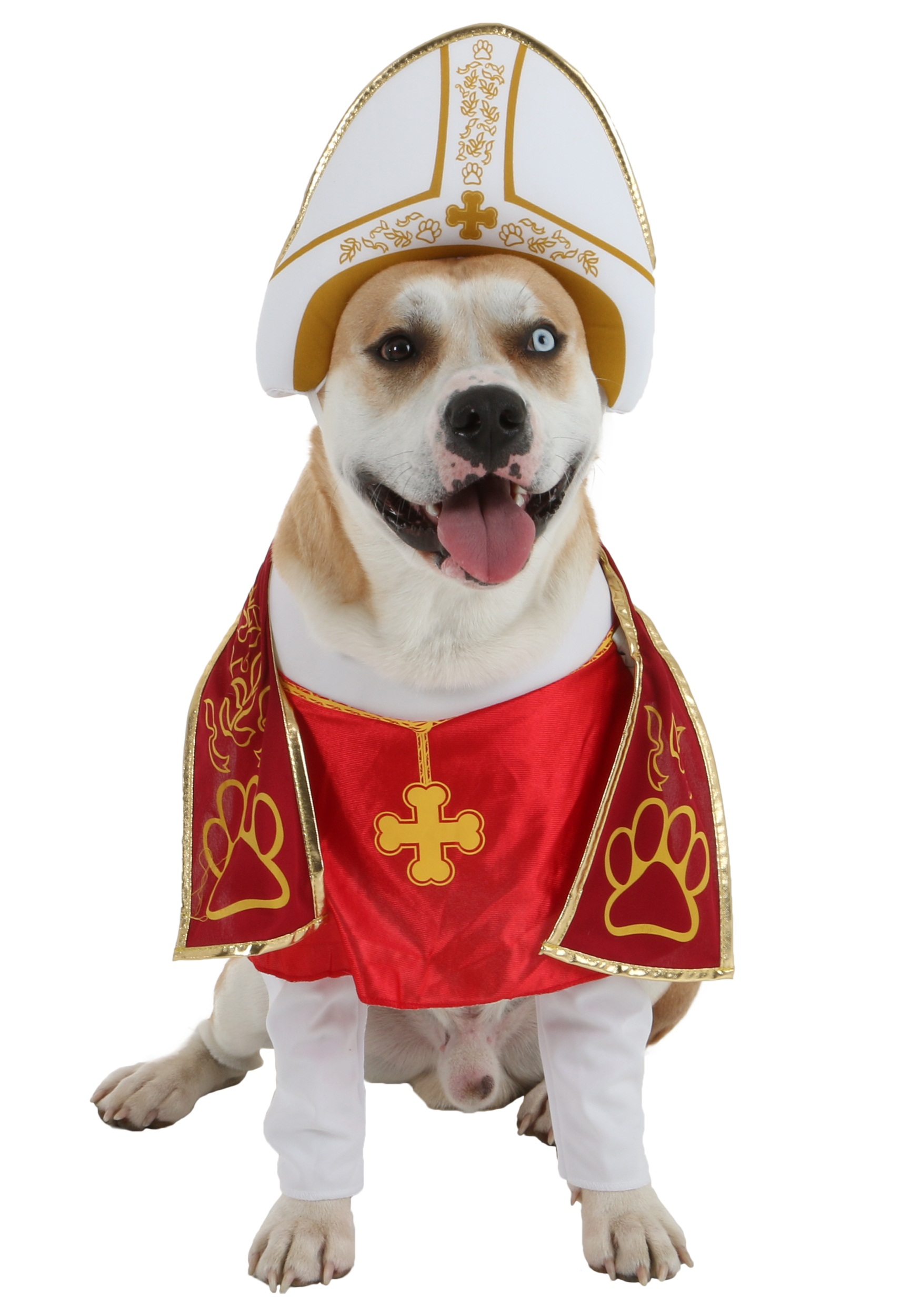 Holy Hound Pet Costume Holy Hound Pet Costume alt1  sc 1 st  Halloween Costumes : the pope costume  - Germanpascual.Com