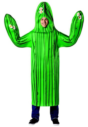 Click Here to buy Adult Cactus Costume from HalloweenCostumes, USA Funds & Shipping
