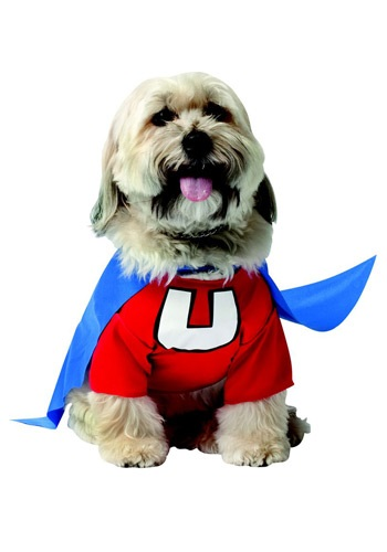 UNDERDOG DOG COSTUME: Sizes small, medium & large. 100% polyester fabric. The red shirt Velcros in back and has a white ''U'' on front. There is a cape included because every hero, human or canine, needs his cape. The little blue cape ties in front and has a white ''U'' on back! (around $17)