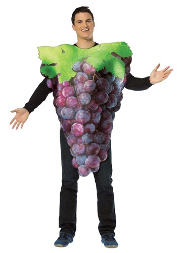 Purple Grapes Adult Costume By: Rasta Imposta for the 2015 Costume season.