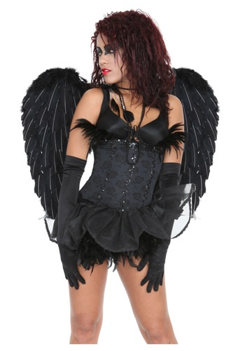 Click Here to buy Black Heavenly Angel Wings from HalloweenCostumes, USA Funds & Shipping