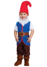 Toddler Gnome Boy Costume