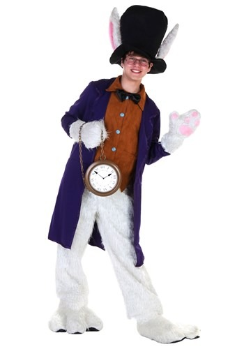 Click Here to buy Teen White Rabbit Costume from HalloweenCostumes, USA Funds & Shipping