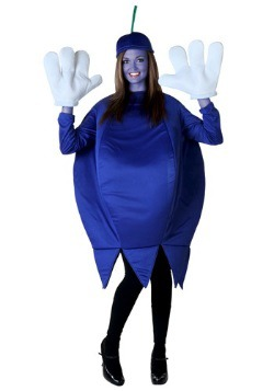 Adult Blueberry Costume