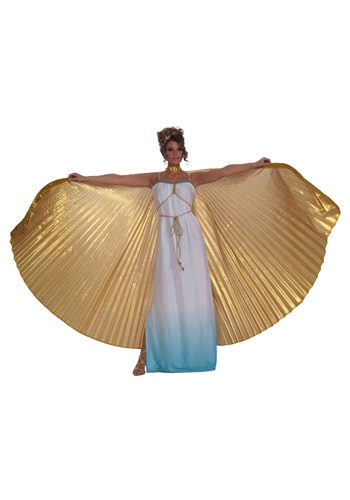 Click Here to buy Gold Theatrical Wings from HalloweenCostumes, CDN Funds