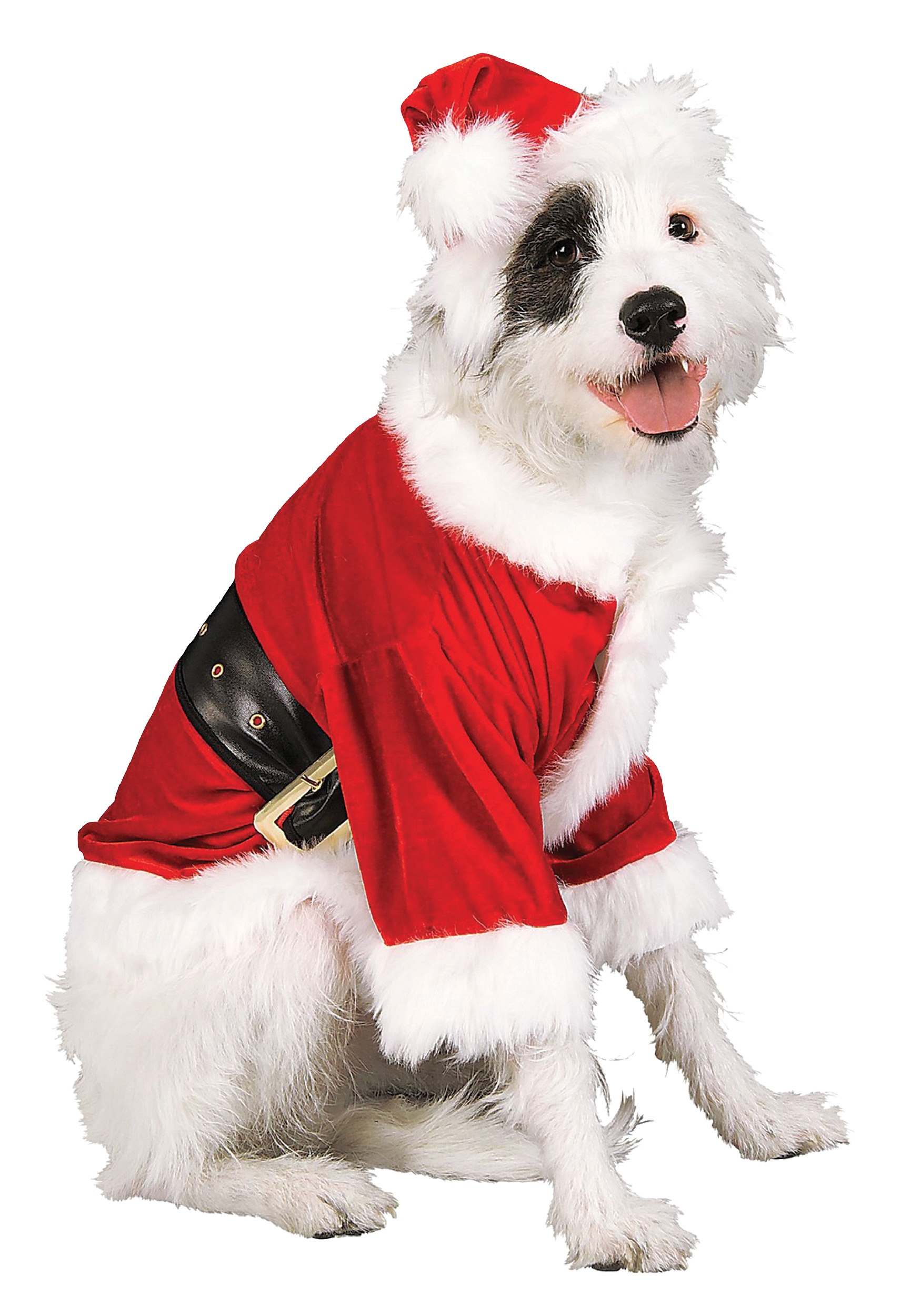 santa pet costume. Black Bedroom Furniture Sets. Home Design Ideas