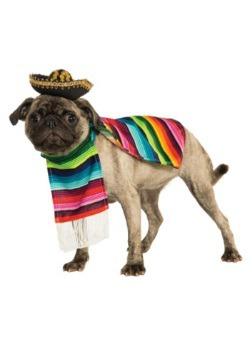 Mexican Serape Pet Costume