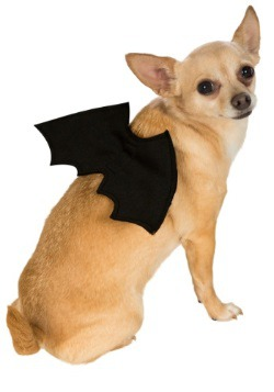 Bat Wings Pet Costume