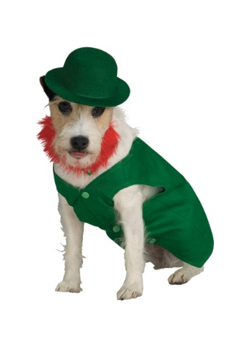 Click Here to buy Leprechaun Pet Costume from HalloweenCostumes, CDN Funds