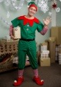 Adult Holiday Elf Costume