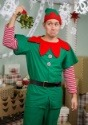 Adult Holiday Elf Costume1
