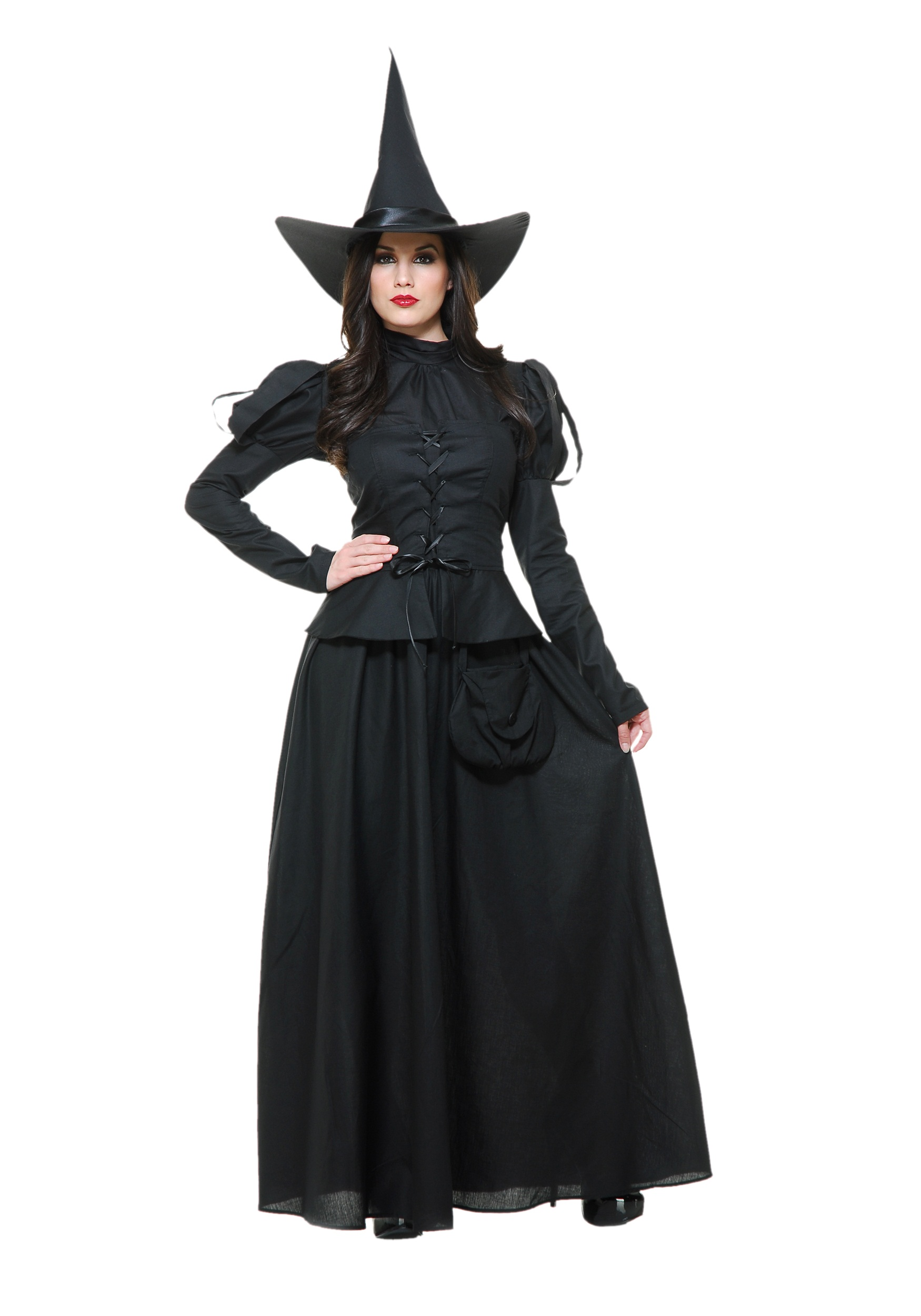 Wicked Witch Adult Costume  sc 1 st  Halloween Costumes & Heartless Witch Adult Costume