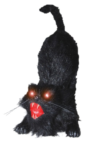 Click Here to buy Animated Cat from HalloweenCostumes, CDN Funds