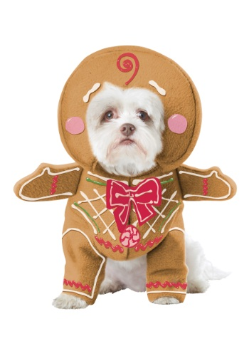 Gingerbread Pup Dog Costume By: California Costumes for the 2015 Costume season.