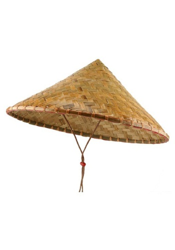 Click Here to buy Deluxe Bamboo Hat from HalloweenCostumes, USA Funds & Shipping
