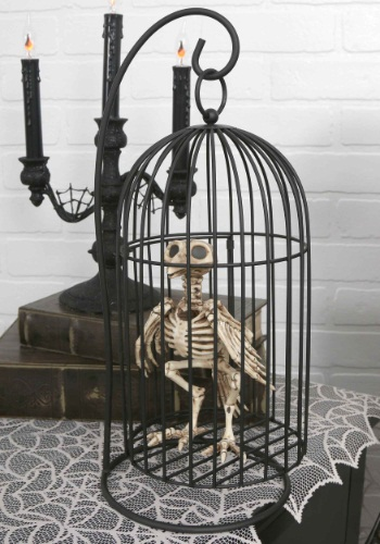 Click Here to buy Skeleton Bird in Cage from HalloweenCostumes, CDN Funds