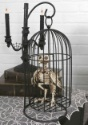 Skeleton Bird in Cage