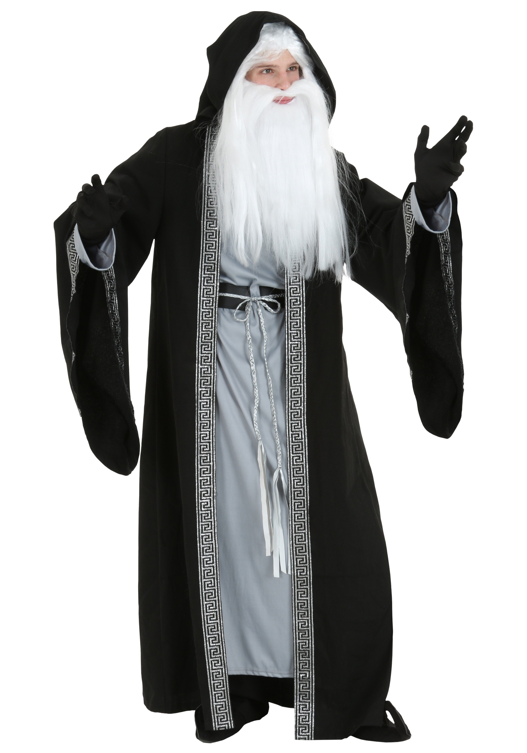Adult deluxe wizard costume solutioingenieria Choice Image