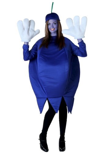 Violet Beauregarde Costume Rental Plus Size Blueberry Co...