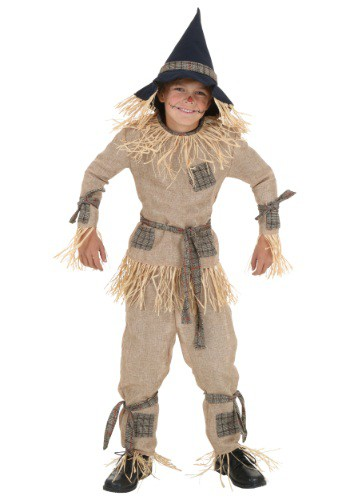 Click Here to buy Kids Silly Scarecrow Costume from HalloweenCostumes, CDN Funds