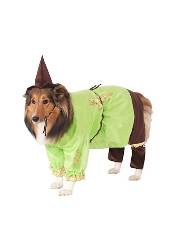 Click Here to buy Scarecrow Pet Costume from HalloweenCostumes, USA Funds & Shipping