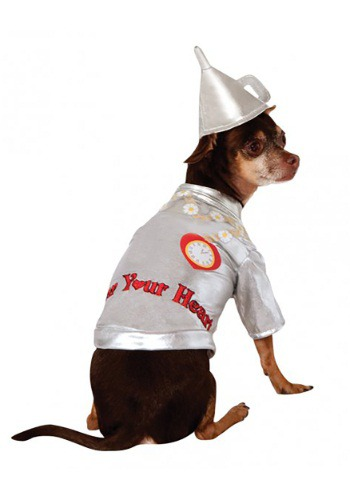Click Here to buy Tin Man Dog Costume from HalloweenCostumes, USA Funds & Shipping