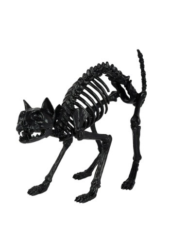 Black Skeleton Cat Prop