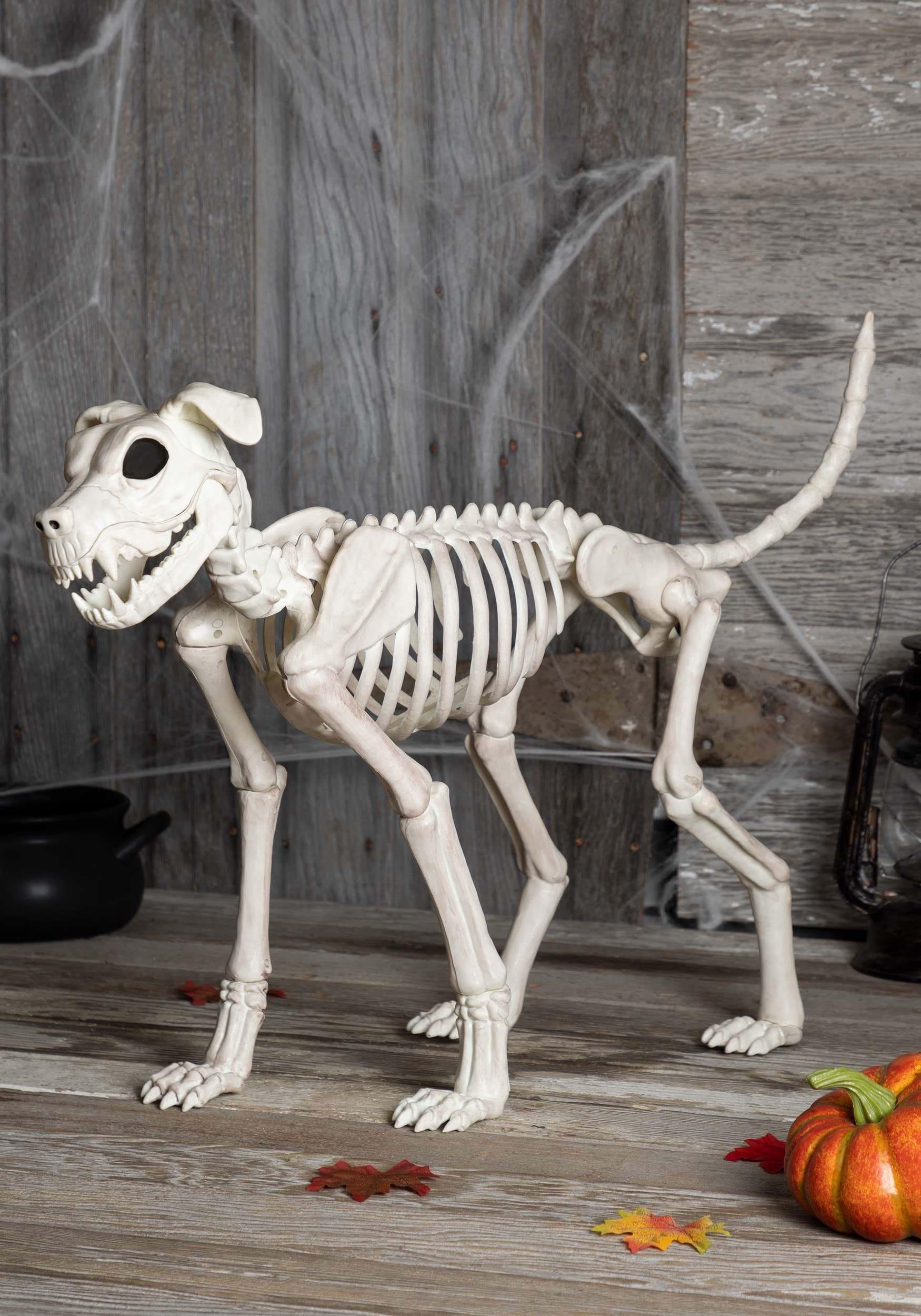 Dog Skeleton Toy