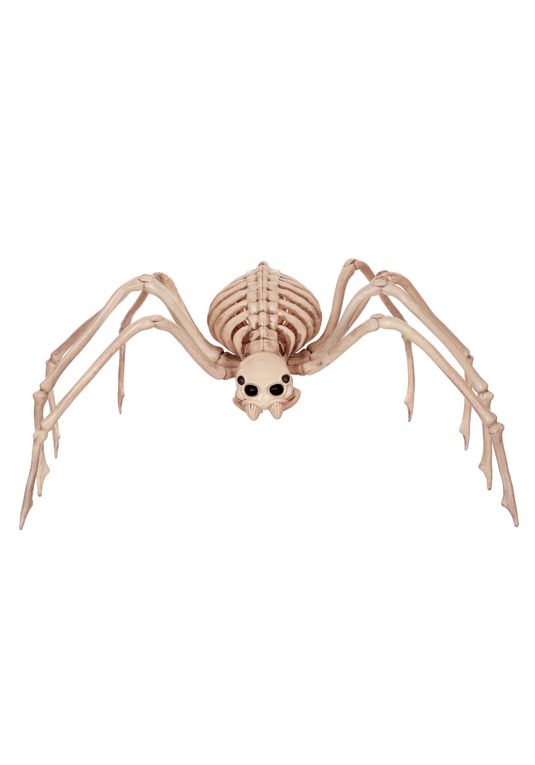 Halloween Spider Webs and Plastic Spiders - Spiderweb Decorations