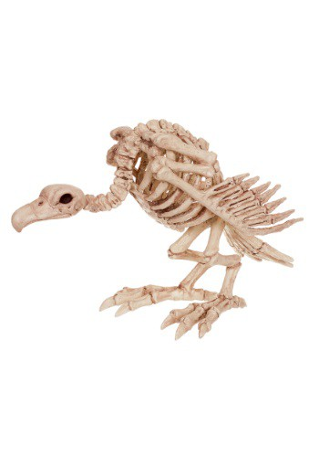 "Image of 14"" Skeleton Vulture"