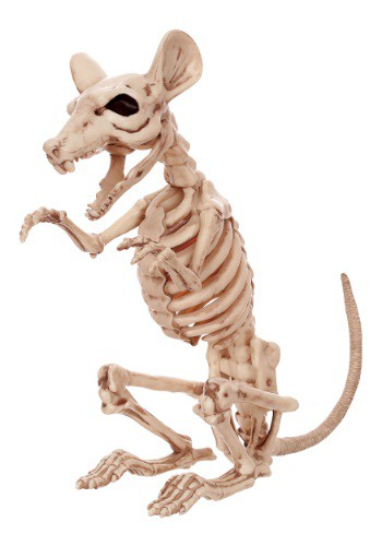 Save 11 Skeleton Rat sale