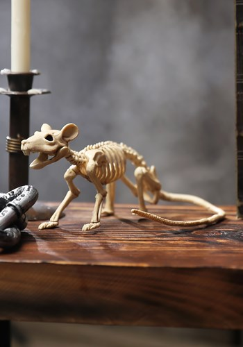Mini Skeleton Rat